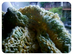 kniting finished (ebbandflo_pomomama) Tags: knitting spirals ferns tentacles fibre