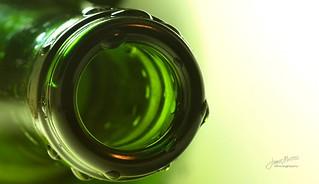 Green Bottle - Macro Mondays: Wet