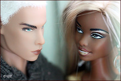 Diva &  Arman (astramaore) Tags: male fashion out toy model glamour francisco doll blueeyes tan gone leon blond chic diva platinum royalty tanned whitehair checked fulllips fashionroyalty