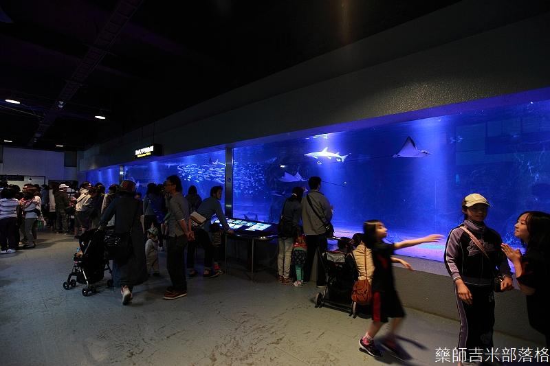 Otaru_Aquarium_256