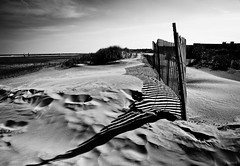 fence shadows (gypsymare) Tags: ocean shadow summer vacation blackandwhite bw beach fence blackwhite newjersey sand dunes dune nj seashore jennifermacneilltraylor jmacneilltraylor jennifermacneill jennifermacneillphotography