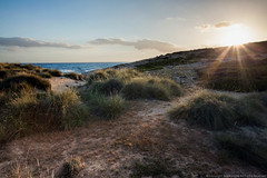 Dunes Early Light (Brian Shore) Tags: sea seascape beach spain dunes mallorca sanddunes majorca balearicislands balearics calamesquida