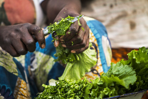 Preparing vegetables taken from garden, Mongu, Zambia. Photo by Felix Clay/Duckrabbit, 2012.