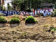 SKIO HIPPO SQUAD LUKAS (UTap0ut) Tags: california art cali graffiti paint lukas hippo graff squad cmh rth skio uploaded:by=flickrmobile flickriosapp:filter=nofilter hippoh