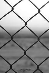 XXX (7anan Saud) Tags: abstract fence تجريد