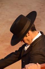 DSC_3140 (Cazador de imgenes) Tags: madrid street plaza espaa festival spain nikon fiesta mayor streetphotography fiestas bull bulls fotos toros streetphoto 13 espagne toro comunidad spanien spagna spanje chinchon spania chinchn  spange 2013 benefico d7000