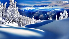 Snow scene picture (Infoway LLC - Website Development Company) Tags: wallpaper beautiful wonderful nice superb awesome images exotic hd illustrator incredible breathtaking classy mindblowing mountainsnow snowybench snowriver snowypark coolwinter coolfrozentrees winterscenechristmas greatwinter responsivewebsitedesign wintersnowyforest snowyforestwallpaper snowycottagewallpaper wintersnowanimatedwallpaper responsivewebdesigncompany snowscenepicture snowyscenewallpaper whitesnowmountains villagesnowlandscape snowroadhousestrees snowywonderlandmountain snowychristmascottage fallingsnowwallpaper animatedwallpaperofsnow