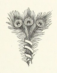 Image taken from page 75 of 'An American Duchess; a pendant to 'Miss Bayle's Romance.''