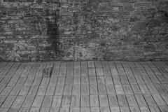 The Dry Salvages (Marioiks) Tags: venice bw art museum modern italia arte contemporary dry bn di museo biennale venezia galleria elisabetta darte benassi briks padiglione salvages 2013