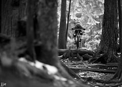Winter Shred (Jeremy J Saunders) Tags: blackandwhite vancouver mountainbike trail northshore mtb northvancouver freeride fromme jjs d800 mtfromme jeremyjsaunders