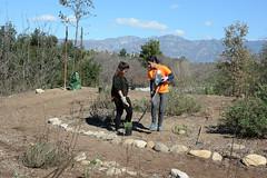 Volunteers (Weeding Wild Suburbia) Tags: spnp