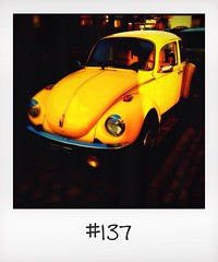 "#DailyPolaroid of 12-2-14 #137 • <a style=""font-size:0.8em;"" href=""http://www.flickr.com/photos/47939785@N05/12596642955/"" target=""_blank"">View on Flickr</a>"