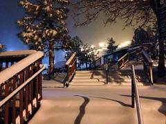 Snow Summit 3-1