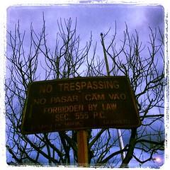 #sign #rust #vintage #no #trespassing #novato #lynnfriedman (Lynn Friedman) Tags: square penelope squareformat novato lordkelvin lynnfriedman 94949 iphoneography instagramapp uploaded:by=instagram