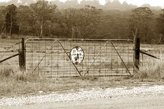 Not for any reason (Occasionally Focused) Tags: blackandwhite bw monochrome sign warning fence outside mono gate pentax takumar sunny 135mm sunny16 k30 hartleyvale unmetered smctakumar135135