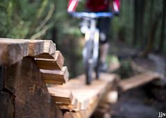 Natural High (Jeremy J Saunders) Tags: bridge mountain bike vancouver forest high ride natural north mount trail shore cedar ladder fromme jjs d800 jeremyjsaunders
