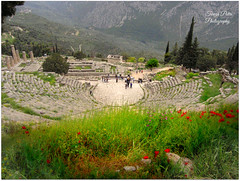 The theatre at Delphi (Terezaki ✈) Tags: trip travel flowers light red vacation holiday green nature colors architecture landscape geotagged greek photography photo spring ancient day searchthebest stones delphi hellas greece gaia pictureperfect 2014 naturesfinest location4 ελλάδα 100faves 50faves γη anawesomeshot flickrdiamond theperfectphotographer δελφοί ομφαλόσ γαία omfhalos θέατροδελφών