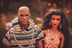 Dariq & Karina (astramaore) Tags: love beauty fashion toy model glamour doll power longhair bald romance relationship hazeleyes dominique chic brunette staying lovestory rare blackhair affair royalty bold relations appeal darius fulllips loveaffair fashionroyalty