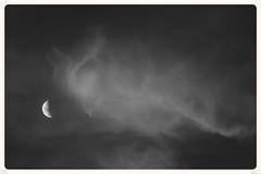 Moonset (Zelda Wynn) Tags: bw moon nature weather clouds blackwhite artgalleryofnsw cloudscape moonset troposphere inspiredbyalfredstieglitz