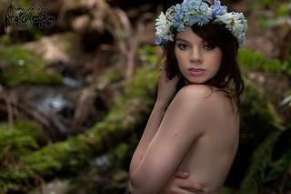 Stephanie Elizabeth