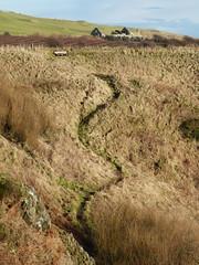 Zig Zag up the Hill (chdphd) Tags: aberdeenshire path stonehaven kincardineshire