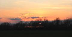 Siepe (lincerosso) Tags: sunset landscape tramonto campagna poesia inverno paesaggio bellezza mistero siepe paesaggioagrario vitaselvatica forestalineare forestareticolare