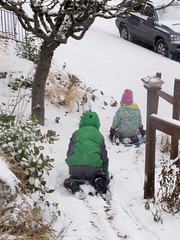 snow day (dolanh) Tags: winter snow lucas sledding zooey southeastportland mttaborneighborhood