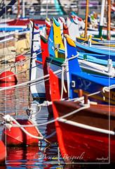 Couleurs pointus (armandbrignoli) Tags: pointu barque nice port couleur canon ville bateau azur cte boat sea harbor city 5d2