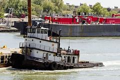 (Waterfront Alliance) Tags: event tugboat killvankull cadelldrydock metropolitanwaterfrontalliance2016