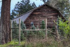 Wood Barn - Vancouver Island, British Columbia, Canada (Toad Hollow Photography) Tags: wood canada barn rural bc britishcolumbia farm vancouverisland weathered hdr bucolic patina