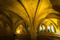 abbaye de Snanque: la salle capitulaire (bonacherajf) Tags: abbaye snanque lubron cistrcien