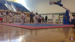 stefanou_15_5_2016_knockdown_3427