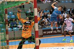 fenix-nantes-25 (Melody Photography Sport) Tags: sport deporte handball balonmano valentinporte fenix toulouse nantes hbcn h lnh d1 canon 5dmarkiii 7020028
