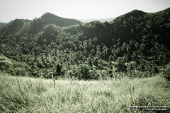 DSC_7975 (Ed Diaz Photography) Tags: hills bicol albay quitinday quitindaygreenhills