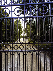 """Gates"" - American Pharoah's New Home - HFF (EX22218 - ON/OFF) Tags: uk trees ireland horses usa green stone america education university belmont gates lexington kentucky cork wroughtiron fences driveway versailles winner mostinteresting horseracing fleurdelis scholars stud keeneland equine thoroughbreds triplecrown kentuckyderby bankrupt veterinarians hff rfi consumeristcom vinch flickriver coolmorestud fencefriday pinnaclephotography ahmedzayat americanpharoah fastesttwominutesinsports founderapproved"
