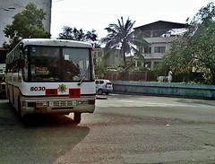 Santrans (Santa Cruz Line) (metrobus926_revival) Tags: condor santarosa sr ud sdx 8030 frontengine nissandiesel santrans cpb87n fe6b