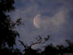 DSCN9912-2WM (moon_hunter2014) Tags: sky cloud moon clouds lune luna