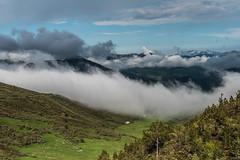 Entre nubes (cmarga28) Tags: picos de europa altura cielo nubes azul verde sky mountain pics colores color belleza beauty nikon digital d750 raw len espaa spain castillalen panoramica