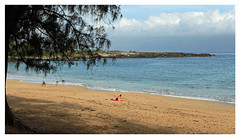 """Reading in Solitude"" - Maui, Hawaii (TravelsWithDan) Tags: ocean morning beach reading hawaii solitude framed candid maui relaxation sunbathing aloneonthebeach"