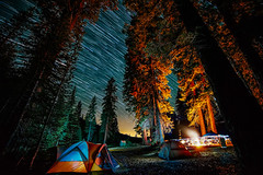 Start of Summer (Fluid Light Images) Tags: california camping trees camp mountains stars star sony trails tent sierra adventure campfire samyang starstax
