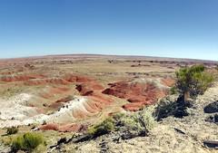Petrified Forest National Park Panorama (C r u s a d e r) Tags: arizona panorama rock desert az strata layers petrifiedforestnationalpark ptgui pentaxk3