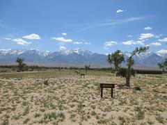 IMG_3609 (christeli_sf) Tags: manzanar inyocounty