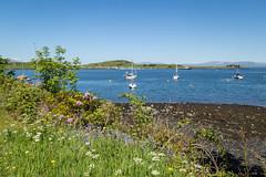 IMG_0801-1 (Nimbus20) Tags: travel holiday sunshine train scotland highlands edinburgh diesel first steam oban fortwilliam caledonian