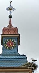 A Timeless Shot (MJWoerner49) Tags: churchtower alsace stork churchspire churchclock beinheim churchtowerclock