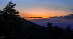 Parnitha mountain (Christos Kapnisis Ace) Tags: nature sunset greece parnitha forest athens summer