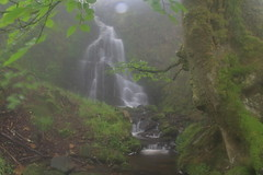 Parque natural de #Gorbeia #Orozko #DePaseoConLarri #Flickr -096 (Jose Asensio Larrinaga (Larri) Larri1276) Tags: 2016 parquenatural gorbeia naturaleza bizkaia orozko euskalherria basquecountry