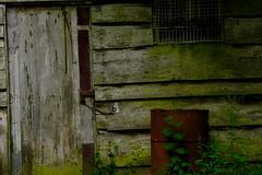 6me Chane (vieubab) Tags: cabane fort calme extrieur bidon porte planches