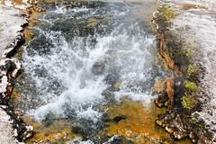 Yellowstone National Park (P. Goldman) Tags: nationalpark may roadtrip yellowstone wyoming 2016 tamron18270 canont3i pgoldman