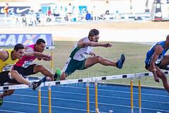 Trofeu Brasil de Atletismo 02jul2016-75.jpg (plopesfoto) Tags: salto esporte martelo gp atletismo atleta vara sobernardodocampo olimpiada medalha competio barreiras arremesso esportista 800metros 100metros cbat arenacaixa