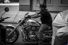 v-rod (desmokurt1) Tags: newyork ny usa amerika bw sw fuji fujixt1 kurtessler downtown village menschen people human vrod lexingtonave harleydavison motorrad motocycle